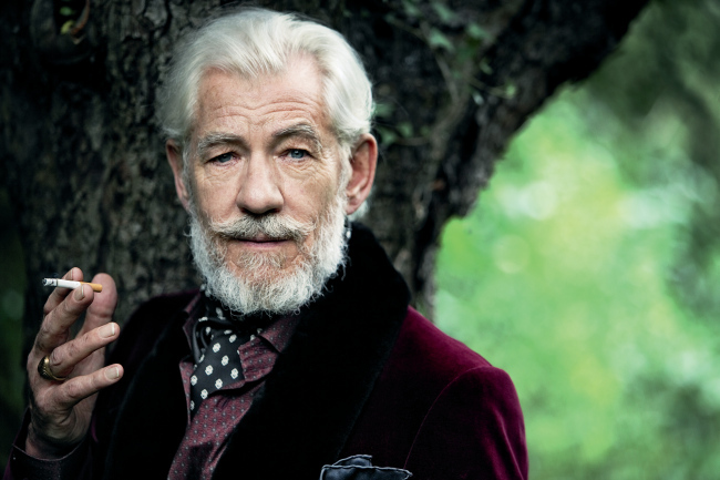 Ian McKellen silver fox