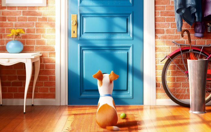Louis C.K. as Max in The Secret Life of Pets